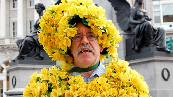 Daffodil_day_2013