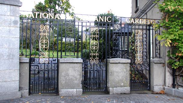Conhecendo a Irlanda: National Botanic Gardens
