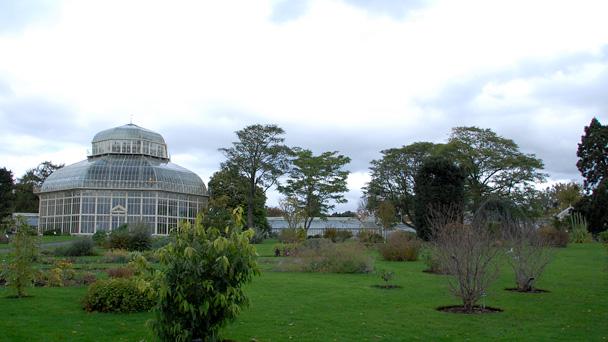 botanic-gardens-dublin-22