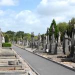 Conhecendo a Irlanda: Glasnevin Cemetery & Museum