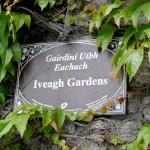 Conhecendo a Irlanda: Iveagh Gardens