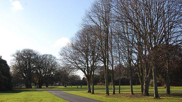 Conhecendo a Irlanda: St. Anne's Park